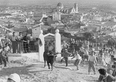 Torico. 1956