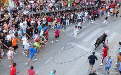 El Torico de la Cuerda de Chiva, declarado Fiesta de Interés Turístico Autonómico