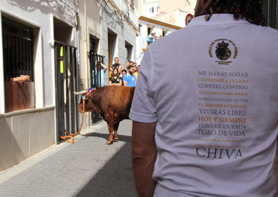 Torico Chiva